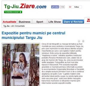 Expozitia Alaptarea e Iubire de Cristina Nichitus Roncea la Targu Jiu Ziare com