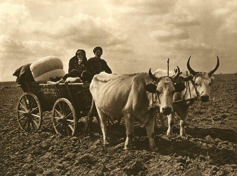 043Fotografi-romani-kurt-hielscher
