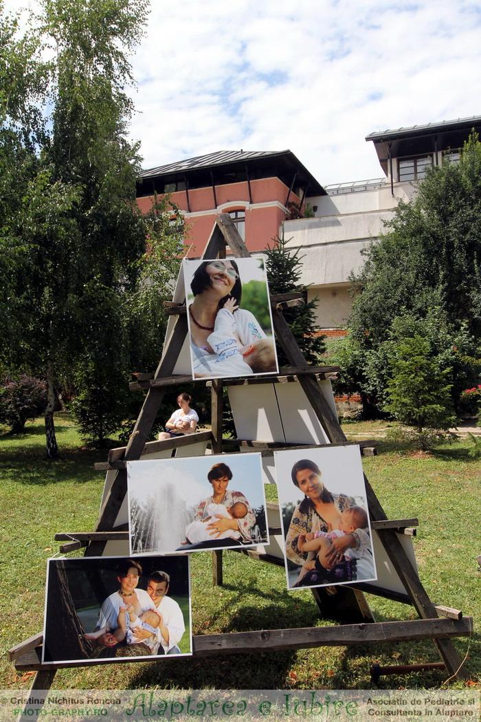 Alaptarea e Iubire - de Cristina Nichitus Roncea 19