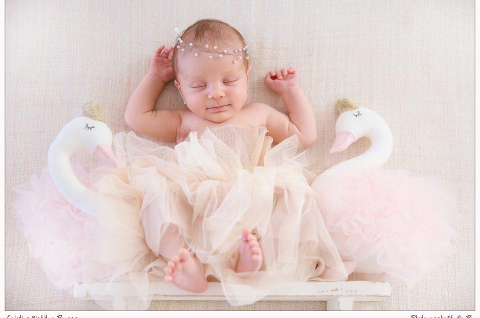 Micuta balerina, Anastasia si Lacul Lebedelor